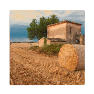 Hay bale in Provence field Wood Coaster