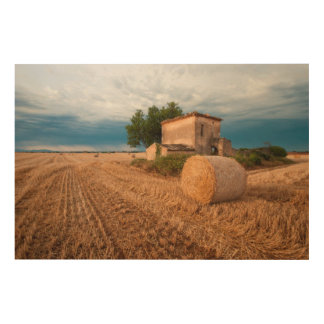 Hay bale in Provence field Wood Print