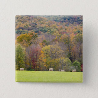 Hay bales and fall foliage, on a farm in 15 cm square badge