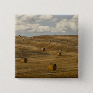 Hay bales and rolling landscape, Tuscany, Italy 15 Cm Square Badge