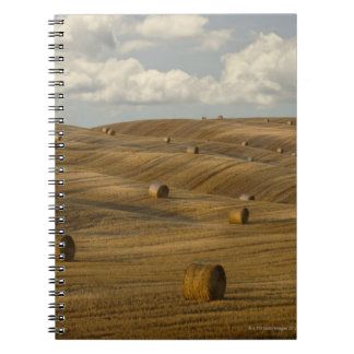 Hay bales and rolling landscape, Tuscany, Italy Notebook