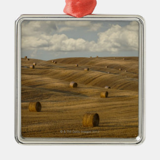 Hay bales and rolling landscape, Tuscany, Italy Silver-Colored Square Decoration