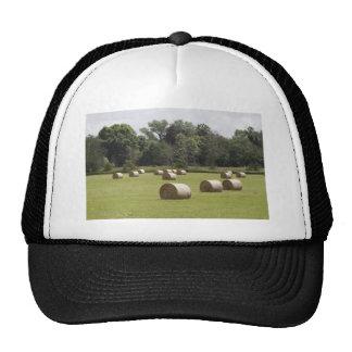 Hay bales hat