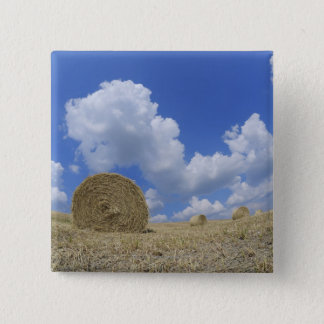 Hay Bales in Field, Pienza, Val d'Orcia, Siena 15 Cm Square Badge