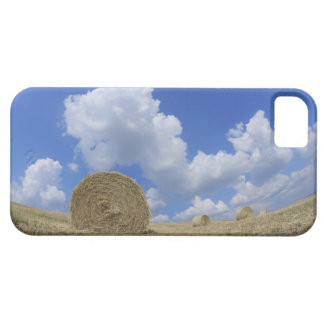 Hay Bales in Field, Pienza, Val d'Orcia, Siena Case For The iPhone 5