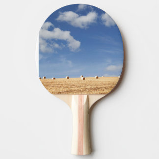 Hay Bales on Field Ping Pong Paddle
