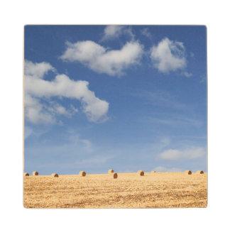 Hay Bales on Field Wood Coaster