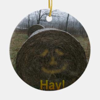 Hay! Christmas Ornament