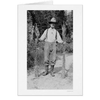 Hay Farmer Alaska 1916 Cards