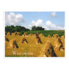 Hay Field Postcard