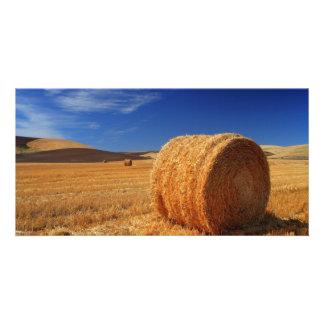 Hay Fields Photo Greeting Card