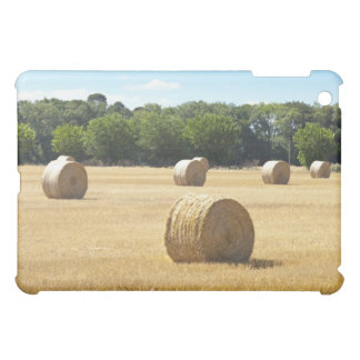 Hay in the Field, France Case For The iPad Mini
