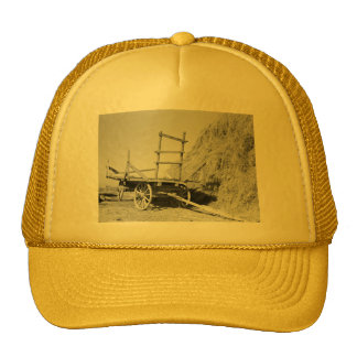 Hay stack and wagon – 1939. mesh hat