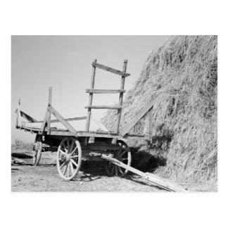 Hay stack and wagon – 1939. postcard
