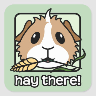 Hay there! (Guinea Pig) Square Sticker