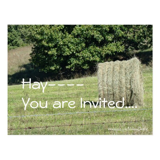 Hay-You are Invited....customise Postcard