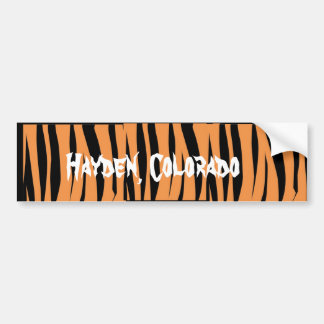 Hayden CO Bumper Sticker