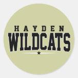 Hayden High School; Wildcats Round Sticker