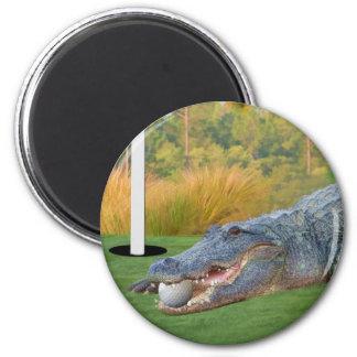 Hazardous Lie Golfing Alligator Magnet