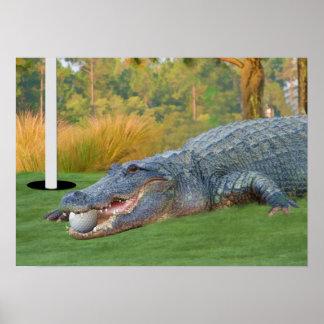 Hazardous Lie Golfing Alligator Print