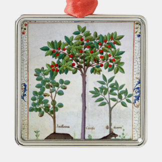 Hazelnut Bush  and Cherry tree Christmas Ornament