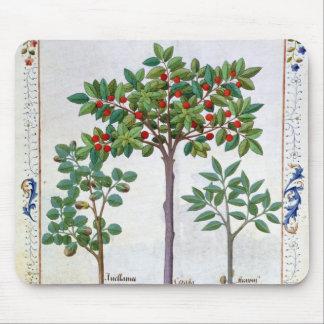 Hazelnut Bush  and Cherry tree Mouse Mat