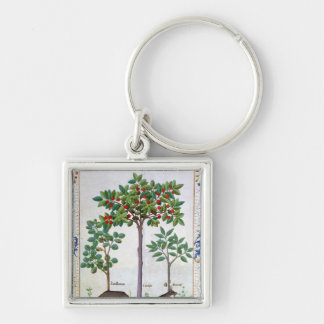 Hazelnut Bush  and Cherry tree Silver-Colored Square Key Ring