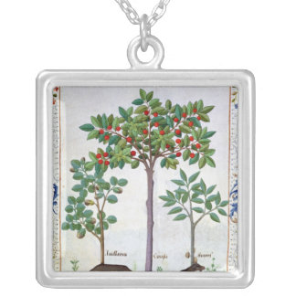 Hazelnut Bush  and Cherry tree Silver Plated Necklace
