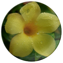 HD Flora - Yellow Flower in the Rain Decorative Plate