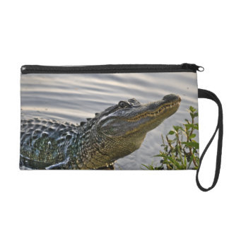 HDR Gator Wristlet Clutches
