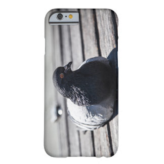 HDR pigeon Iphone case