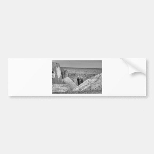 HDR Seagull B/W Sitting on Concreat Pier Pole Bumper Sticker