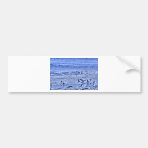 HDR Seagulls Beach One Waving Wings Bumper Stickers