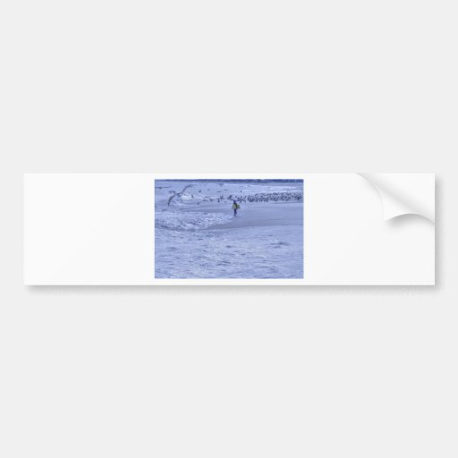 HDR Surfer Holding Body Board Seagulls on Sand Bumper Sticker