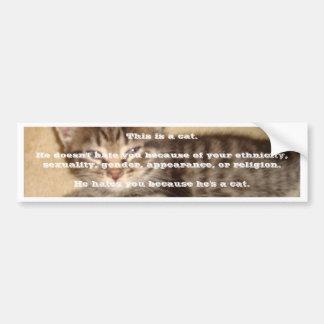 He Hates You Because He's a Cat Car Bumper Sticker