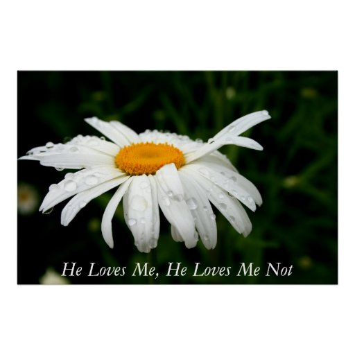 He Loves Me, He Loves Me Not Posters