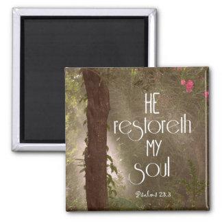 He restoreth my Soul Bible Verse Magnets