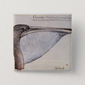 Head of a Brown Pelican 15 Cm Square Badge