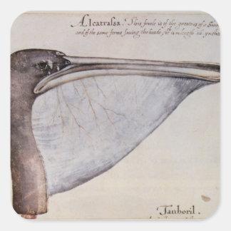 Head of a Brown Pelican Square Sticker
