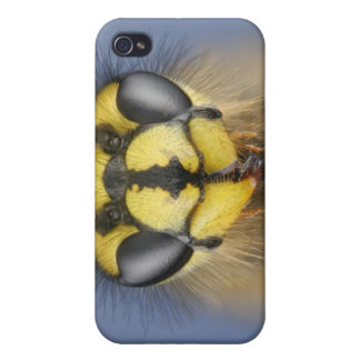 Head of a Common Wasp iPhone 4/4S Cases