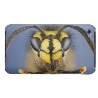 Head of a Common Wasp iPod Touch Covers