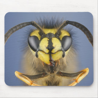 Head of a Common Wasp Mouse Mat
