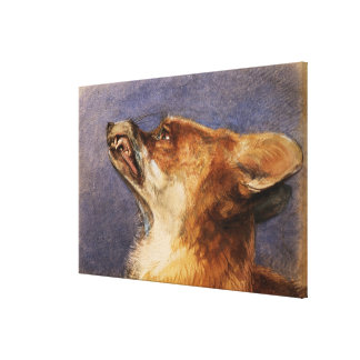 Head of a Fox Canvas Print