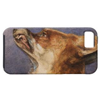 Head of a Fox Tough iPhone 5 Case