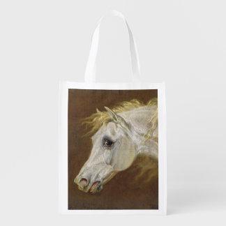 Head of a Grey Arabian Horse (oil on canvas on pan
