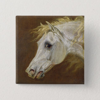 Head of a Grey Arabian Horse (oil on canvas on pan 15 Cm Square Badge