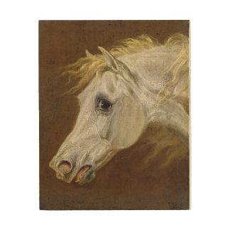 Head of a Grey Arabian Horse (oil on canvas on pan Wood Wall Decor