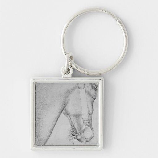 Head of a horse, from the The Vallardi Album Keychains