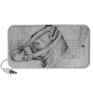 Head of a muzzled dog notebook speaker