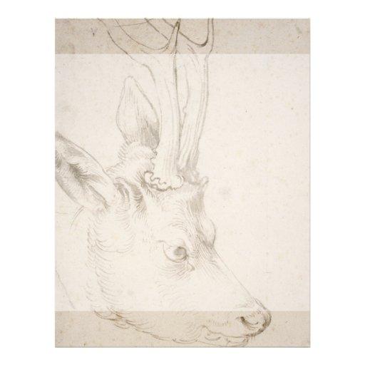 Head of a Roebuck by Albrecht Durer Full Color Flyer